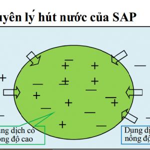 SAP α (Super Absorbent Polymer) – 1kg